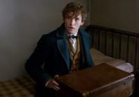 Les Animaux Fantastiques : le tout premier trailer en VF du spin-off d'Harry Potter