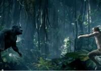 Tarzan : découvrez le premier trailer de la nouvelle adaptation live