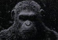 [NYCC2016]War for the Planet of the Apes : un teaser dévoilé à la Comic Con
