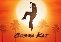 Cobra Kai : l'intégralité de la première saison est disponible !