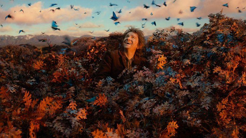Le Hobbit La Désolation de Smaug