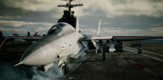 Ace Combat 7:Skies Unknown F-14D