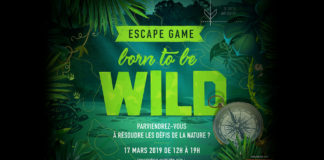 Born-to-be-wild---L'Escape-Game