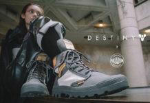 Palladium X Destiny
