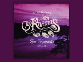 The Rasmus x Lost Frequencies In the shadows
