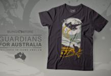 Destiny 2 Guardians for Australia 2