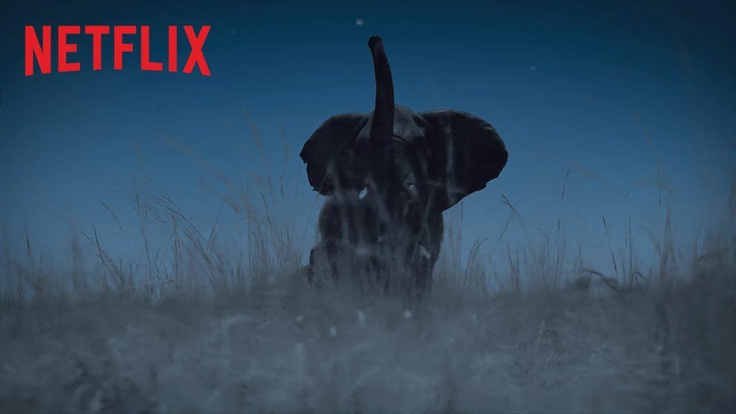 La Terre, La Nuit Netflix