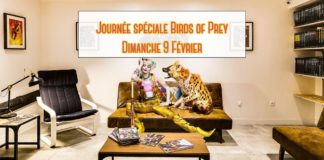 Le Comics Corner - Après-midi Birds of Prey !