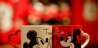 Disneyland Paris Saint Valentin 11