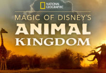 Au Cœur d'Animal Kingdom