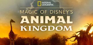 Au Cœur d'Animal Kingdom
