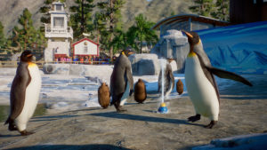 Planet-Zoo_Aquatic_Paid_Screenshots_Penguin_03_3840x2160